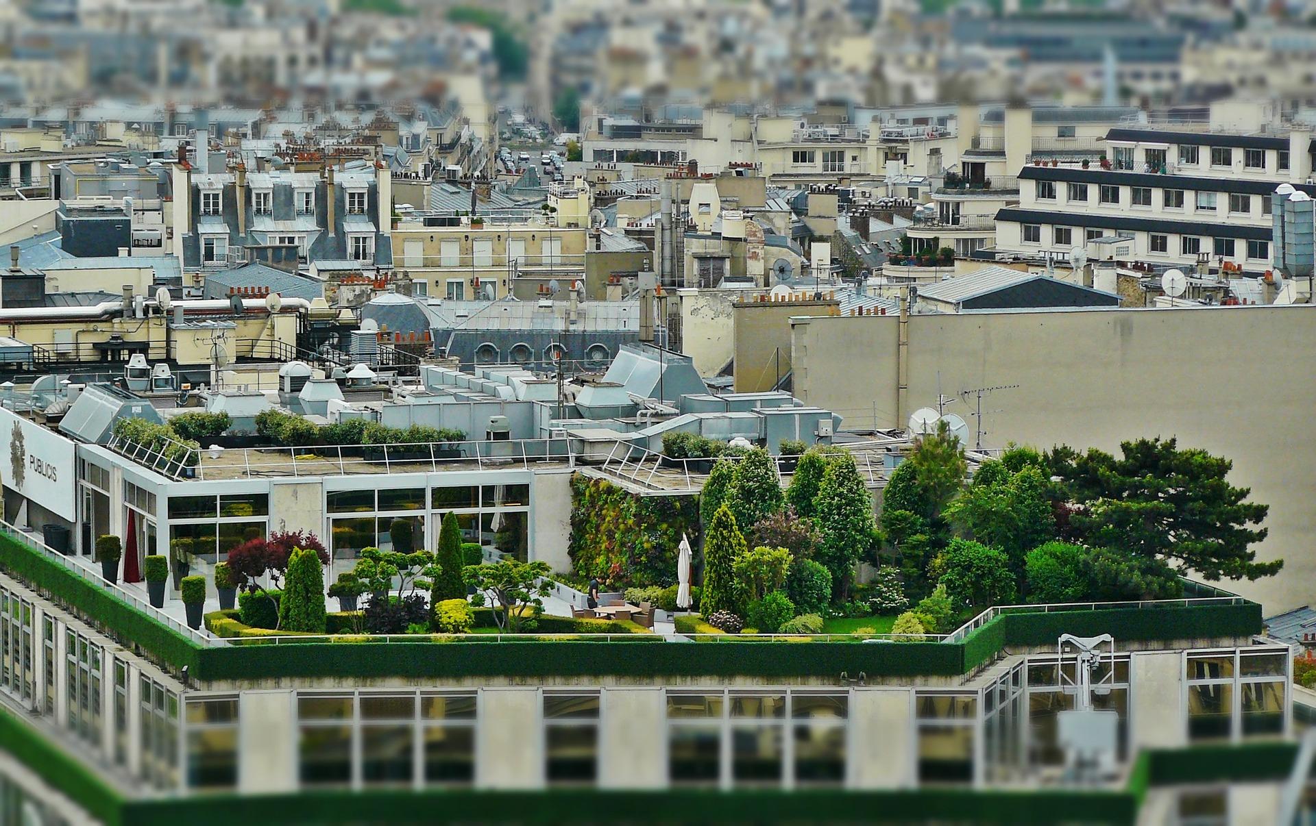 V boji proti horku ve městech  pomáhají zelené střechy a fasády